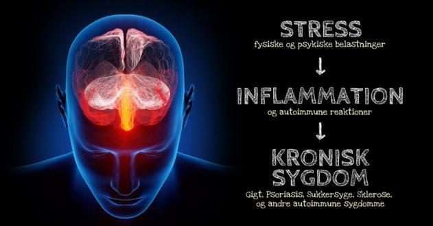 Forskning viser: Stress forværrer kronisk sygdom